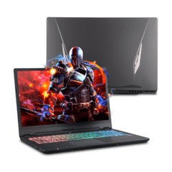"- Quick Ship Clevo P960EF 16.1"" Core™ i7, NVIDIA® GeForce RTX™ 2070 Max-Q Graphics Gaming Laptop"